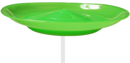 Spinning Plate-Green