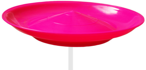 Spinning Plate-Pink