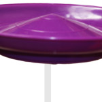 Spinning Plate-Purple